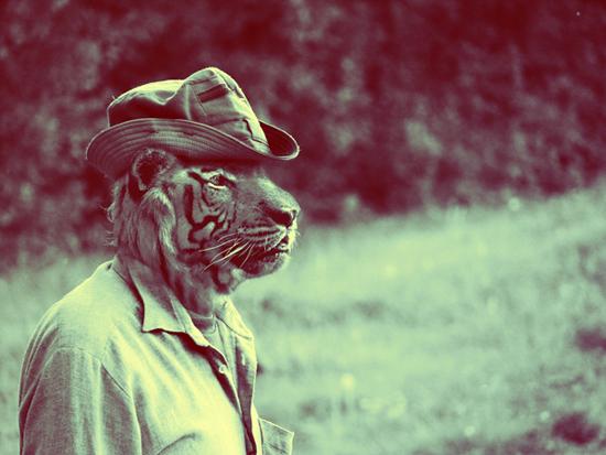 Animal_photo_manipulation_digital_art_tiger_1