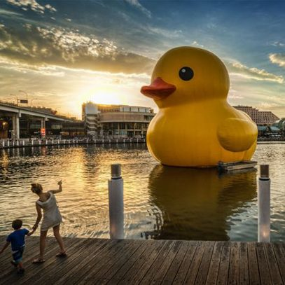 Rubber Duck in Sydney, 2013